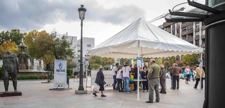 RESUMEN FOTOGRÁFICO – Día mundial de la diabetes en Granada.